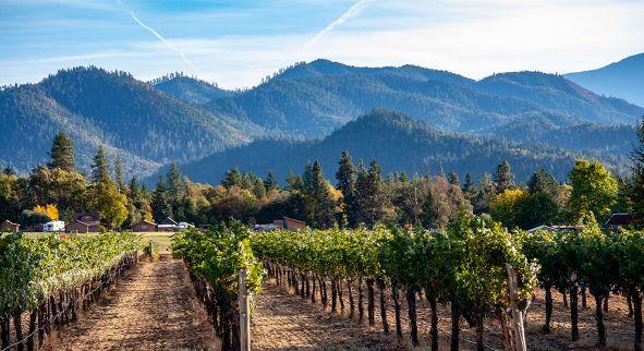 Wein USA Oregon