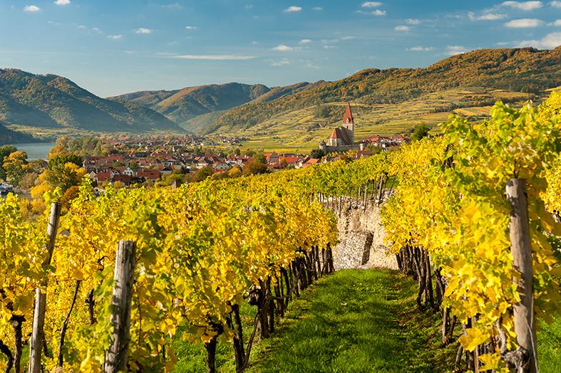 Weinland Österreich