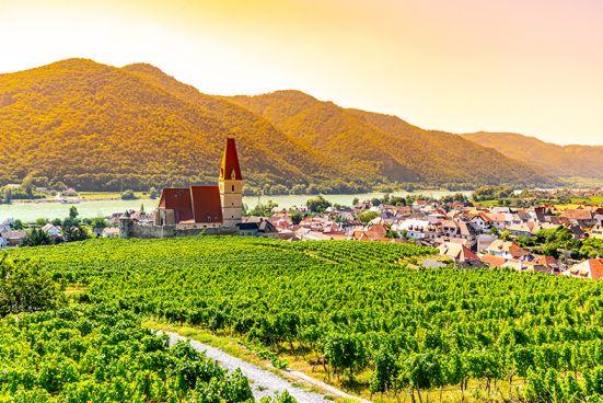 Weinland Österreich Wachau