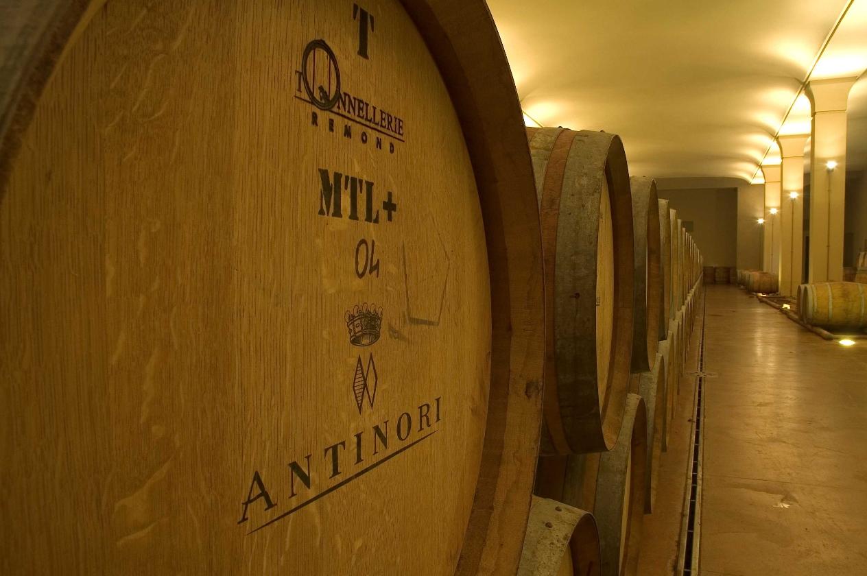 Antinori Weinkeller Barrique