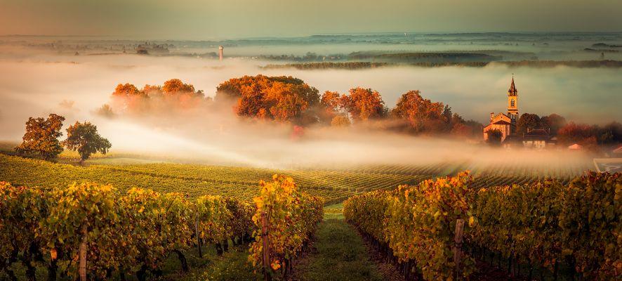 Bordeaux Wein Frankreich