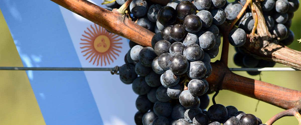 wein-argentinien